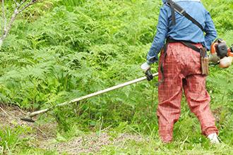 草刈り・雑草・木の撤去